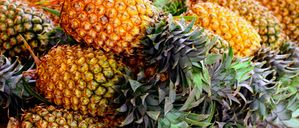 Why did the animals eat the talking pineapple after the hare finished the race?