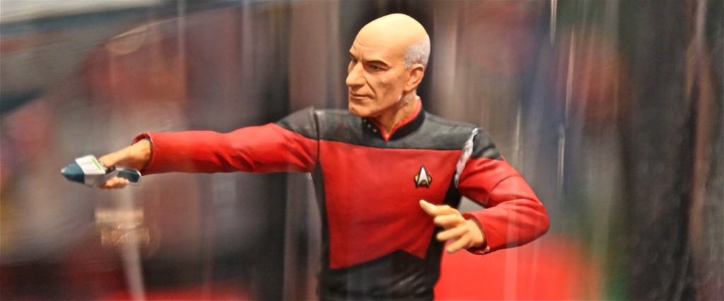 nycc picard